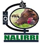 NALIRRI